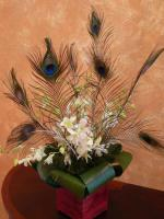wedding flowers florist- Peacock Feathers and ...